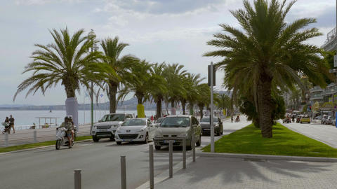 Palm trees at the Riviera of Nice - CITY OF NICE, FRANCE - JULY 10, 2020 Live Action