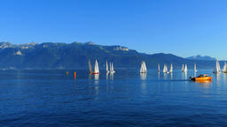 Boats at Lac Leman, France Footage