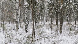 young male athlete runner running in winter forest in snow Footage