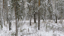young athlete runner running in winter woods in snow Footage