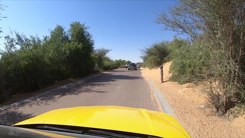 Car is driving through oasis, car rear window camera. Dubai Live Action