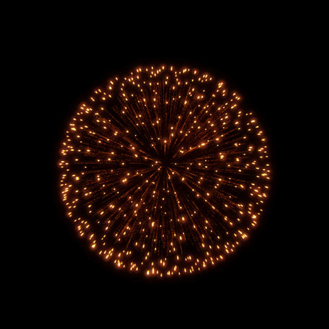 Fireworks Kiku 05 ProRes Animation