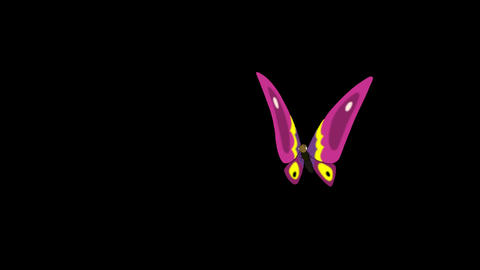 Pink butterfly flies in, sits and flies away alpha looped CG動画