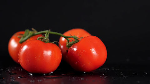Drop Dropped Perfect Fresh Red Wet Tomatoes with Tomato on Background Live Action