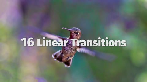 Linear Transitions Plantillas de Premiere Pro