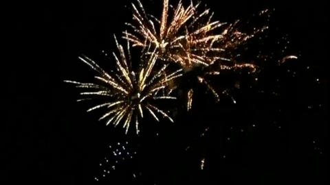 Fireworks motion graphics with night background Animation