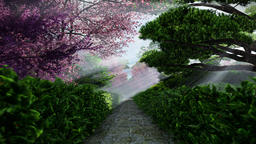 Japanese garden in spring, sun shining between trees Animation