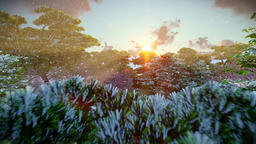 Japanese garden in winter, sun shining between trees, sunset, aerial view Animation