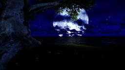 Lonely tree on solitary island with seagulls flying against full moon Animation