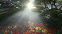 Magic forest with colorful tulips, sun shinning through trees, tilt Animation