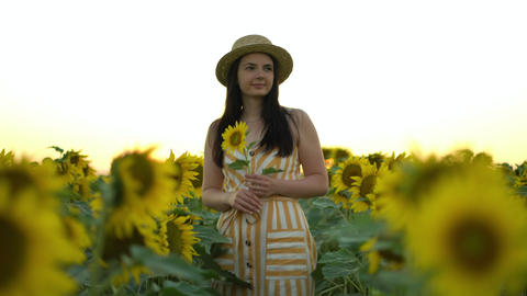 carefree woman walking and enjoying beautiful sunflower field at sunset Live Action