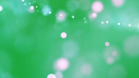 Bokeh lights motion graphics with green screen background Animation