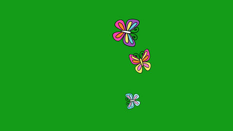 Flying colourful butterflies motion graphics with green screen background Animation