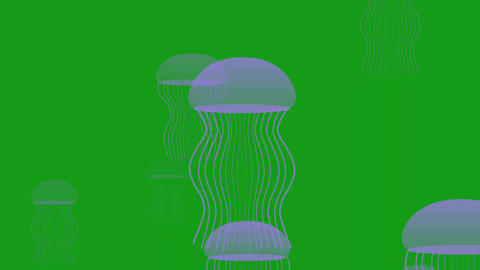 Jelly fishes motion graphics with green screen background Animation