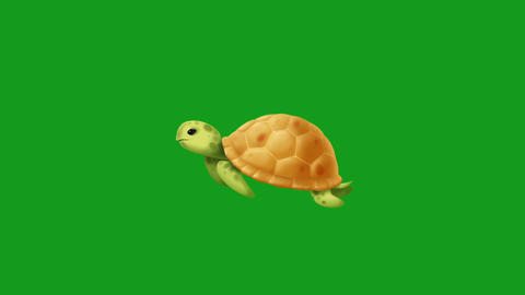 Swimming turtle motion graphics with green screen background CG動画