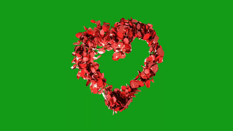Rose petals in heart shape with green screen background Animation