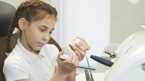 A curious girl is played with an artificial jaw in the dentist's office Live Action