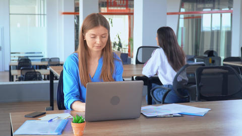 employee working with computer celebrating great deal with coworkers Live Action