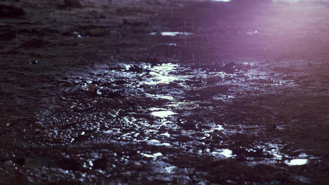 Feet of soldier in army boots moving forward in mud and puddle. Soldier stepping ライブ動画