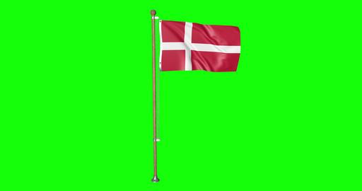 flag danish pole danish Denmark danish flag waving pole waving Denmark waving flag green screen pole Animation