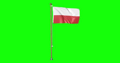 flag polish pole polish Poland polish flag waving pole waving Poland waving official flag green Animation