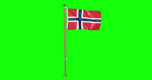 flag norwegian pole norwegian Norway norwegian flag waving pole waving Norway waving flag green Animation