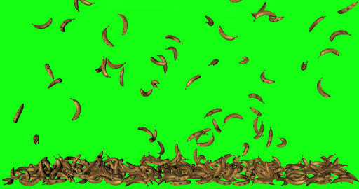 green screen fruit banana animation falling floor stacked 3d green screen animation banana fruit Animation