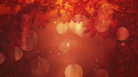 Autumn Season Background Loop Animation