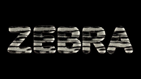 3d animated text spelling zebra, made of fury zebra striped letters CG動画