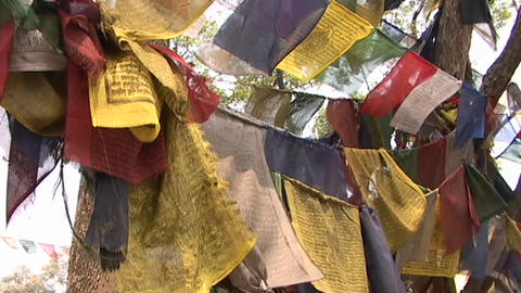 Prayer flags blowing in the wind Footage