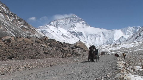Tibetan men and climber riding in a carriage pulled by... Stock Video Footage