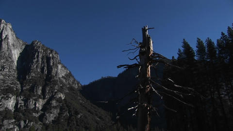 The camera pans left through a forest past rugged mountains, a waterfall and the end of the mountain Footage