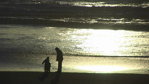 A man and a two children explore the beach as the tide goes out during the golden-hour Footage