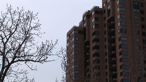 A look at a highrise apartment building with bare trees in the foreground Footage