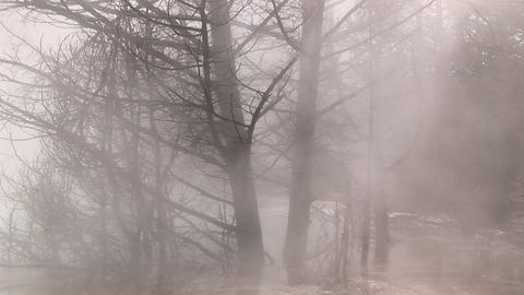 Heavy steam from a nearby hot springs envelopes winter's... Stock Video Footage