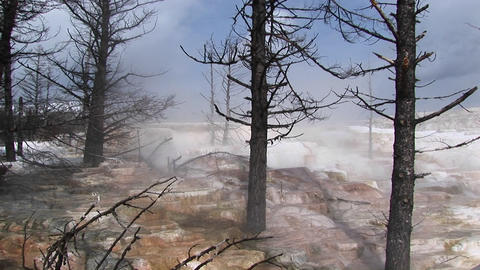 Medium-shot of steam rising in a geothermal area in... Stock Video Footage