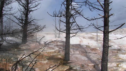 Medium-shot of steam rising in a geothermal area in Yellowstone National Park Footage