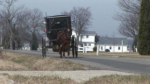 An Amish carriage shares the country roads with automobiles Stock Video Footage