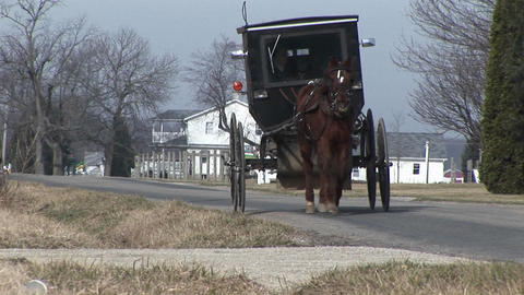 An Amish carriage shares the country roads with automobiles Footage