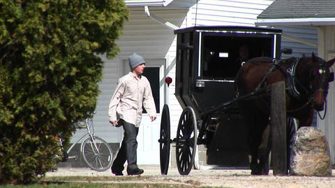 An Amish boy and girl prepare to travel via their horse and buggy Footage