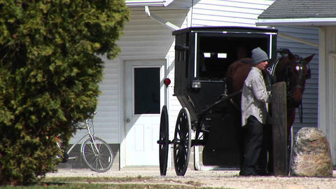 An Amish boy and girl prepare to travel via their horse... Stock Video Footage