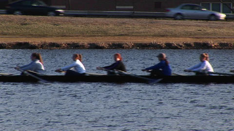 A women's team heads down the Charles River for rowing... Stock Video Footage