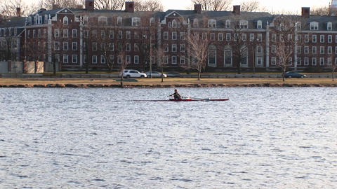 Medium-shot of a person rowing a boat along the Charles River in Cambridge, Massachusetts Footage
