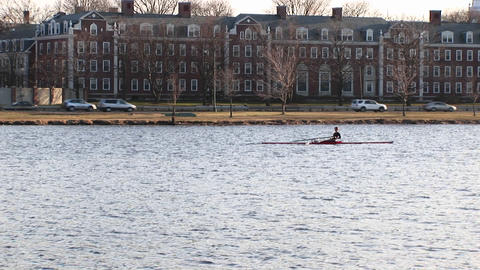 Medium-shot of a person rowing a boat along the Charles... Stock Video Footage
