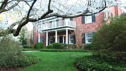 A medium view of red brick suburban home in early spring with flowering trees Footage