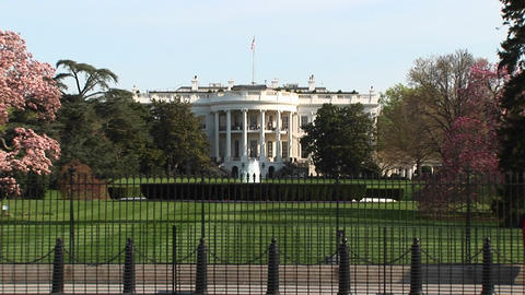 Long-shot of the White House in spring Stock Video Footage