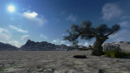 Mountain and solitary tree, timelapse clouds Animation