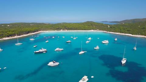 Aerial - Boats, yachts and sailing boats anchored in a bay with turquoise water Footage