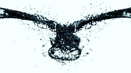 Oil Splash Animation