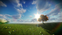 Solitary tree on green meadow, time lapse clouds Animation
